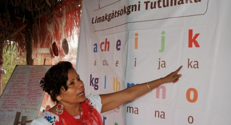 ley general de derecho linguisticos de los pueblos indigenas:
