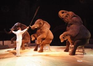circos-sin-animales