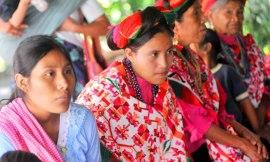 indigena0808