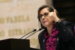 diputada-Martha-Lucía-Mícher-Camarena-del-PRD