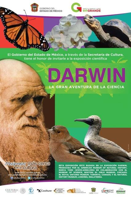 darwinexpo
